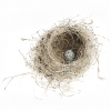Nest Norville Small Print